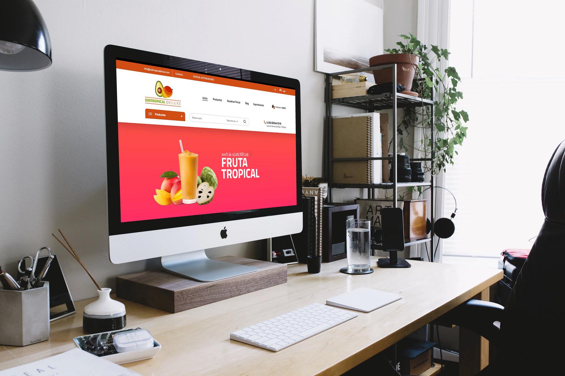 diseno-tiendas-online-jaen